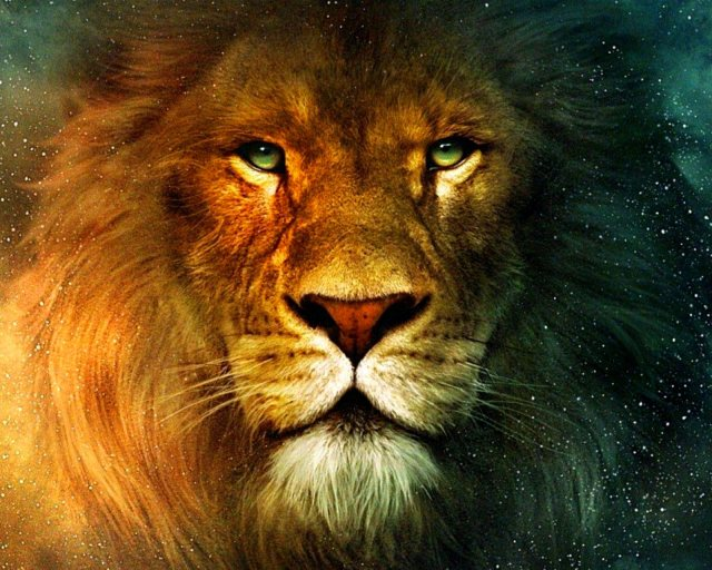 Aslan Lion 1600x1280-145